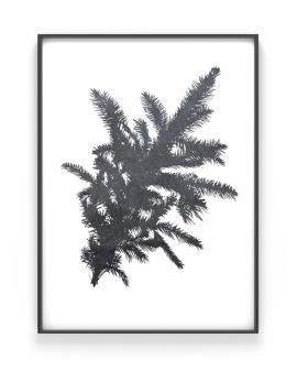 Winterliches Design Poster - Schwarz -weiss Print mit einem Tannenzweig